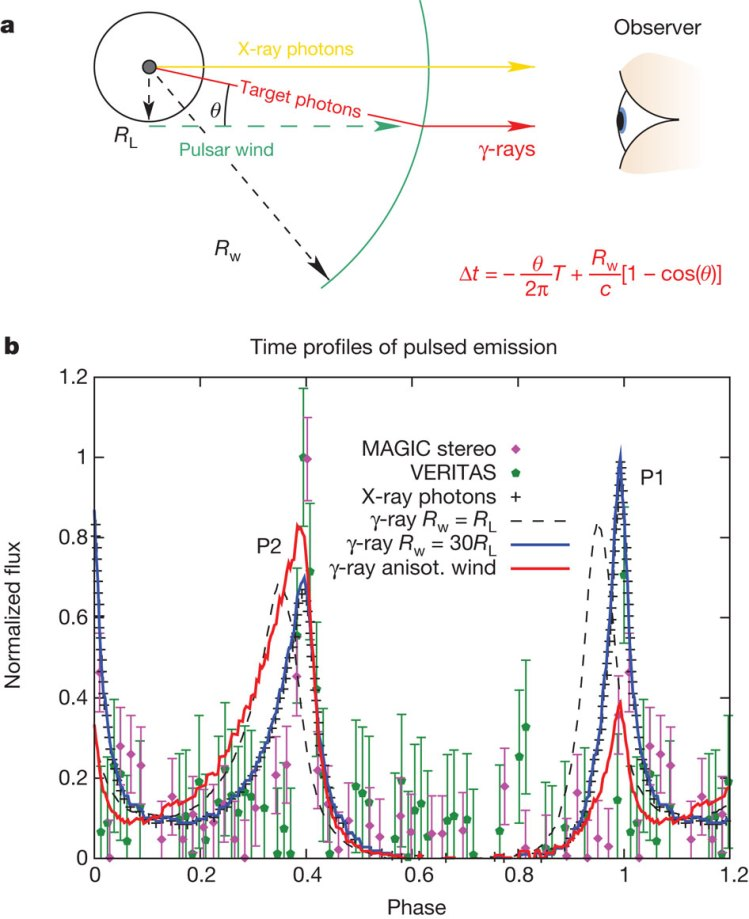 phase normalized flux time profiles of pulsed emission