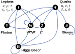 elementary particle interactions Higgs Boson  Leptons Quarks Gluons Photon W+ w- z °