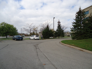 ymca-from-clarion-hotel-parking-lot-buffalo-rd-n-garrison-rd-fort-erie-ontario-canada-linda-randall