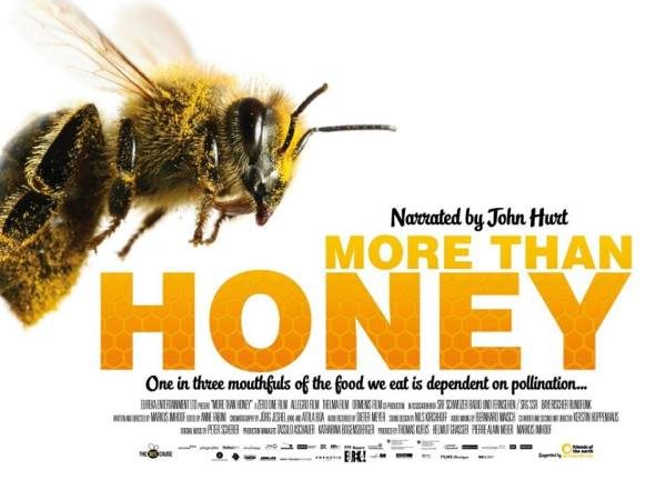 More Than Honey narrated by John hurt  Academy Award Nominated Director Markus Imhoof (the boat is full) NIFF Niagara Integrated Film Festival Linda Randall