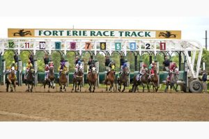 fort erie racetrack sunday june 28 2015