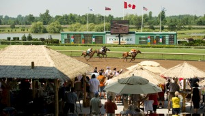 fort-erie-racetrack-horse-trackside-tiki-bar-music-concert-live-entertainment-chinese-pop-rock-world-tour-band-igc-entertainment-canada-linda-randall